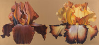 Lowell Nesbitt (1933-1993) Two Iris, 1973 Oil on canvas 73 x 158-1/2 inches (185.4 x 402.6 cm)