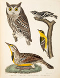 Books:Natural History Books & Prints, Alexander Wilson. American Ornithology. Or, the Natural History of the Birds of the United S...