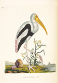 Books:Natural History Books & Prints, [Thomas Pennant]. Indian Zoology. London: 1790 [1791]. Second edition....