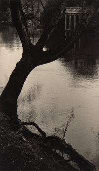Tomio Seike (Japanese, b. 1943) Missing Tree, 1996 Toned gelatin silver, 1997 6-7/8 x 4-1/8 inches (17.5 x 10.5 cm)