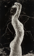 Photographs, Ruth Bernhard (American, 1905-2006). Symbiosis, 1971. Gelatin silver, printed later. 9-1/2 x 5-3/4 inches (24.1 x 14.6 c...