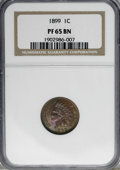 Proof Indian Cents: , 1899 1C PR65 Brown NGC. NGC Census: (10/8). PCGS Population (3/5). Mintage: 2,031. Numismedia Wsl. Price for NGC/PCGS coin ...