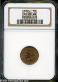 Indian Cents: , 1894 MS65 Red and Brown NGC. ...
