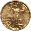 1995 $5 Tenth-Ounce Gold Eagle MS70 PCGS. PCGS Population: (67). NGC Census: (290). CDN: $1,000 Whsle. Bid for NGC/PCGS...