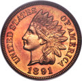 Proof Indian Cents, 1891 1C PR66 Red PCGS....