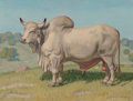 Paintings, Fred Darge (American, 1900-1978). Brahman Bull. Oil on canvasboard. 12 x 16 inches (30.5 x 40.6 cm). Signed lower right:...