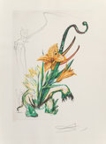 Prints & Multiples, Salvador Dalí (1904-1989). Lily Elephant and Narcissus Andalou, from Florals (two works), 1972. Lithographs in c... (Total: 2 Items)