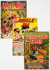 Jungle Related Comics Group of 21 (Various Publishers, 1950-72) Condition: Average VF.... (Total: 21 )
