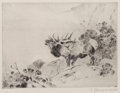 Works on Paper, Carl Clemens Moritz Rungius (American, 1869-1959). A Collection of Forty-Two Wildlife Scenes. Etching and drypoint on pa... (Total: 42 Items)