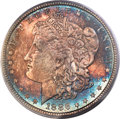 1886 $1 MS63 PCGS. Gold CAC. PCGS Population: (44052/70665). NGC Census: (44573/87854). CDN: $44 Whsle. Bid for NGC/PCGS...