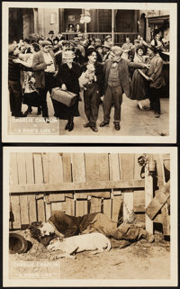 """A Dog's Life (First National, 1918). Very Fine-. Lobby Cards (2) (8"""" X 10""""). Comedy. ... (Total: 2 Items)"""