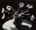 Photographs, Irene Fay (Russian, 1914-1986). Daisies with White Pitcher, 1975. Gelatin silver. 4-1/4 x 5 inches (10.8 x 12.7 cm). Sig...
