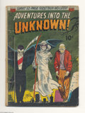 Golden Age (1938-1955):Horror, Adventures Into the Unknown #27 (ACG, 1952) Condition: GD. EerieOgden Whitney cover. Eight pages of art by Al Williamson an...