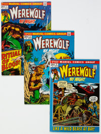 Werewolf by Night Group of 19 (Marvel, 1972-77) Condition: Average FN.... (Total: 19 Comic Books)