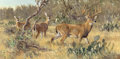 Paintings, Ken Carlson (American, b. 1937). Texas Brush Country-Whitetails. Oil on Masonite. 18 x 36 inches (45.7 x 91.4 cm). Signe...