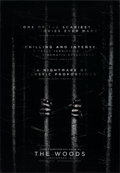 "Movie Posters:Horror, Blair Witch (Lionsgate, 2016). Rolled, Very Fine-. One Sheet (27"" X 40"") DS Advance. Pre-release Title: The Woods. Horro..."