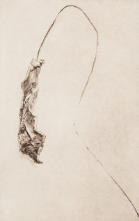 Henrieke Strecker (German, 20th Century) Untitled, circa 2011 Photogravure 9 x 5-3/4 inches (22.9
