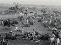Photographs, Marc Riboud (French, 1923-2016). Camel Market, Nagaur, Rajasthan, India, 1956. Gelatin silver, printed later. 15 x 20 in...