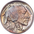 Buffalo Nickels, This item is currently being reviewed by our catalogers and photographers. A written description will be available along with high resolution images soon.