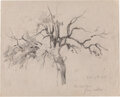 Works on Paper, Julian Onderdonk (American, 1882-1922). Live Oak Trees- from Nature, 1915. Pencil on paper. 8 x 10 inches (20.3 x 25.4 c...