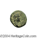 Ancients:Roman, Ancients: Syria, Decapolis. Pella. Domitian. 81-96 C.E. AE 15 mm(2.25 g). Year 145 (82/3 C.E.). Laureate head right / Date palm.Spij...