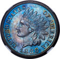 1886 1C Type One PR67+ Brown NGC. NGC Census: (9/0 and 1/0+). PCGS Population: (15/1 and 2/0+). CDN: $2,250 Whsle. Bid f...