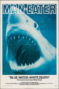 """Movie Posters:Documentary, Blue Water, White Death (National General, 1971). Folded, Fine/Very Fine. One Sheet (27"""" X 41""""). Documentary.. ..."""