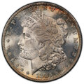Morgan Dollars: , 1885-S $1 MS63 PCGS. PCGS Population: (3555/3495 and 44/164+). NGC Census: (1778/1653 and 29/36+). CDN: $330 Whsle. Bid for...