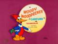 "Animation Art:Limited Edition Cel, ""Cartune"" Woody Woodpecker Limited Edition Cel #28/500 (Walter Lantz, 1989)...."