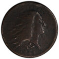 Large Cents, 1793 1C Wreath, Vine and Bars Edge, S-9, B-12, R.2, -- Environmental Damage -- PCGS Genuine. VF Details. . From Th...