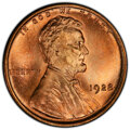 Lincoln Cents: , 1928 1C MS66 Red PCGS. PCGS Population: (430/73 and 25/21+). NGC Census: (99/12 and 0/3+). CDN: $210 Whsle. Bid for NGC/PCG...