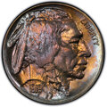 Buffalo Nickels, 1919-S 5C MS64 PCGS. PCGS Population: (220/34 and ...