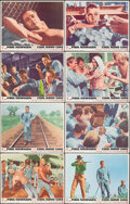 """Movie Posters:Drama, Cool Hand Luke (Warner Bros.-Seven Arts, 1967). Overall: Very Fine. Lobby Card Set of 8 (11"""" X 14""""). Drama.. ... (Total: 8 Items)"""