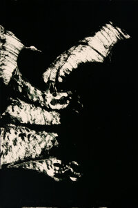 Fritz Scholder (American, 1937-2005) Anpao Suite (Owl, Bat, Buffalo, Death) (four works), 1976 Lithograph on Arches Pa...