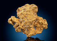 Gold Nugget Poker Creek Mine, Fortymile Mining District Southeast Fairbanks Census Area
