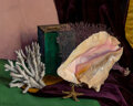 Paintings, Luigi Lucioni (American, 1900-1988). Still Life with Conch Shell, Coral, and Starfish, 1938. Oil on canvas. 16 x 20 inch...
