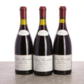Red Burgundy, Corton 2009 . Renardes, Leroy . 1crc, 2ssos due to overfill. Bottle (3). ... (Total: 3 Btls. )
