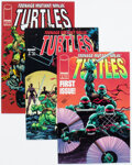 Modern Age (1980-Present):Alternative/Underground, Teenage Mutant Ninja Turtles #1-23 Complete Run Group (Image, 1996-99) Condition: Average VF/NM.... (Total: 23 Comic Books)