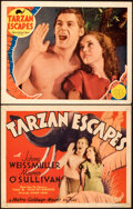 """Movie Posters:Adventure, Tarzan Escapes (MGM, 1936). Fine/Very Fine. Title Lobby Card & Lobby Card (11"""" X 14"""").. ... (Total: 2 Items)"""