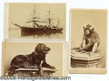 Photography:CDVs, NICE SET OF 3 CDVS OF THE SHIP TICONDEROGA AND IT'S MASCOTS. SET...