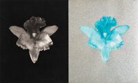 Robert Mapplethorpe (American, 1946-1989) Orchid, 1986 Photogravure and screenprint with glitter