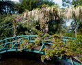 Photographs, Stephen Shore (American, 1947). Monet's Home and Gardens, Giverny, France (24 works), 2002. Dye coupler on Fujicolor Cry...
