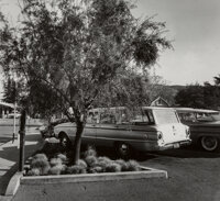 Pirkle Jones (American, 1914-2009) Parking Lot Tree, circa 1960 Gelatin silver 7-1/2 x 8-1/4 inch