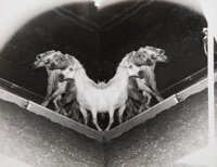 Weegee (American, 1899-1968) Horses (two works) Gelatin silver 8-1/8 x 10 inches (20.6 x 25.4 cm)
