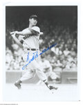 Autographs:Photos, Baseball Autograph Ted Williams Signed 8x10 Photo ...