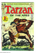 Bronze Age (1970-1979):Miscellaneous, Tarzan #207 and 208 Group (DC, 1972) Condition: Average VF/NM. Thislot consists of issues #207 and 209, the first and secon... (Total:2 Comic Books Item)