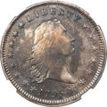 Early Dollars, 1795 $1 Flowing Hair, Two Leaves, Silver Plug, B-4, BB-14, R.3, VF25 NGC....
