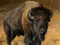 Paintings, Ken Carlson (American, b. 1937). Bison. Oil on Masonite. 45 x 60-1/8 inches (114.3 x 152.7 cm). Signed lower right: Ca...