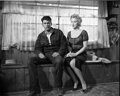 Movie/TV Memorabilia, Collection of (175) black-and-white camera negatives of Marilyn Monroe from Bus Stop by Milton Greene. ...
