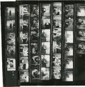 Movie/TV Memorabilia, Collection of (32) contact sheet prints of Marilyn Monroe with Milton Berle and Maurice Chevalier and Marlene Dietrich by Milt...